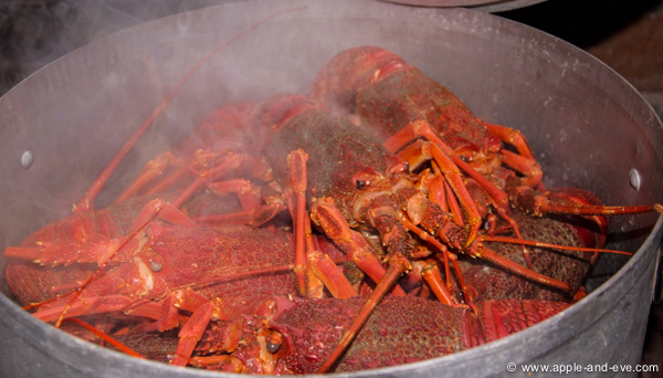The crayfish turn red after being cooked for a few minutes indicating that it's ready to be eaten.