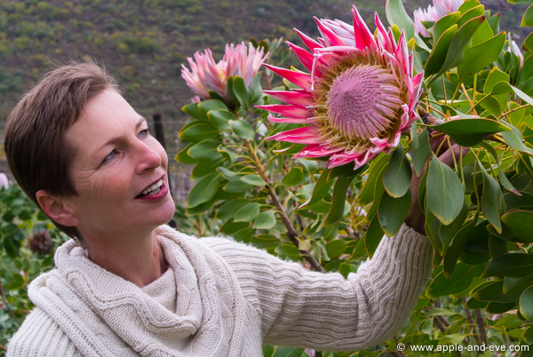Jaunine admiring a Giant Protea on a Spring-day outing.
