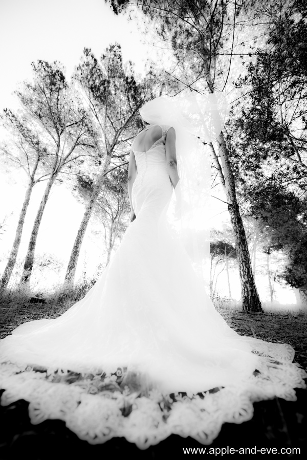 Bride in the forest.