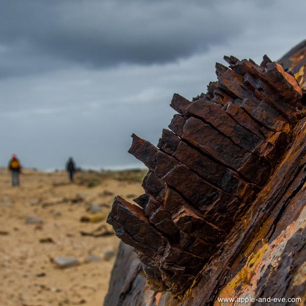 Thomas T Tucker shipwreck